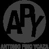 apy-02